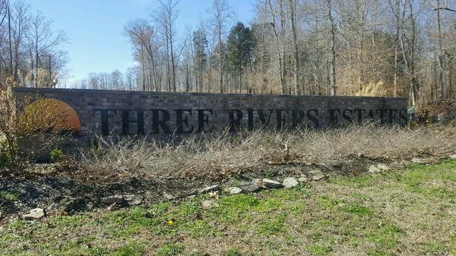 3 Rivers Drive, Hurricane Mills, TN 37078 (MLS #RTC2231494) :: Amanda Howard Sotheby's International Realty