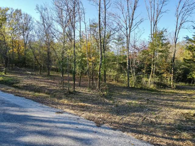 0 Stephens Rd, Columbia, TN 38401 (MLS #RTC2231693) :: Team Wilson Real Estate Partners