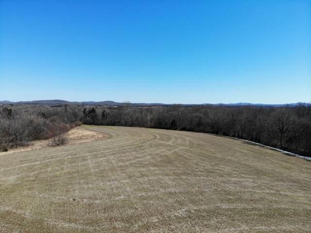 1 Bellenfant Rd, College Grove, TN 37046 (MLS #RTC2232022) :: Team George Weeks Real Estate
