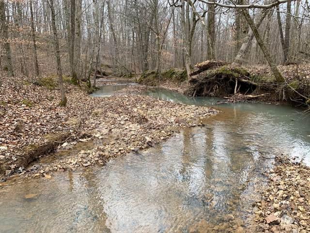 0 Hayes Ridge Rd, Indian Mound, TN 37079 (MLS #RTC2232324) :: Randi Wilson with Clarksville.com Realty