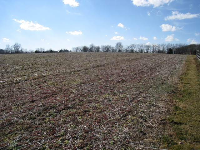 1 Clearview Rd, Cottontown, TN 37048 (MLS #RTC2233039) :: DeSelms Real Estate