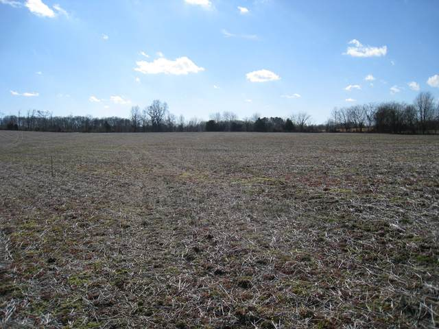 2 Clearview Rd, Cottontown, TN 37048 (MLS #RTC2233042) :: DeSelms Real Estate