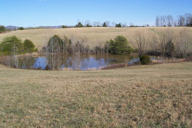 800 Goodbar Rd, Rock Island, TN 38581 (MLS #RTC2233115) :: DeSelms Real Estate