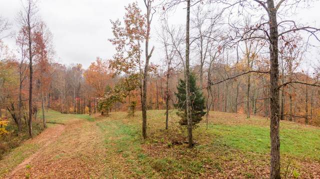 0 Haywood Hollow Rd, Columbia, TN 38401 (MLS #RTC2233247) :: Oak Street Group