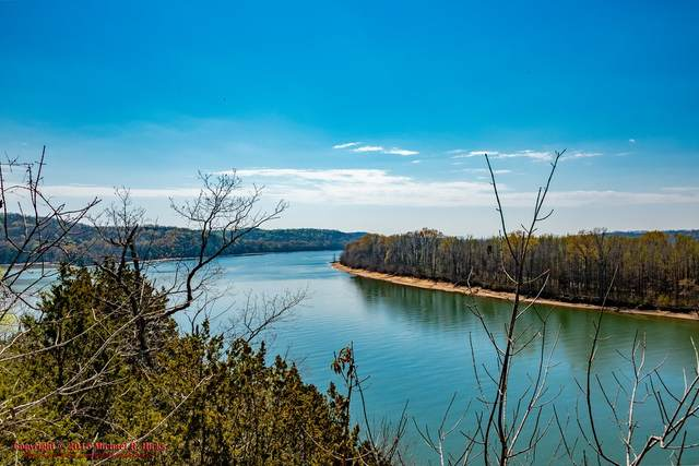 0 Eagle Point Circle, Decaturville, TN 38329 (MLS #RTC2234108) :: Nashville on the Move