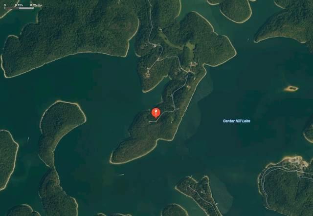 80 Harbor Pointe Drive, Silver Point, TN 38582 (MLS #RTC2234707) :: Team George Weeks Real Estate