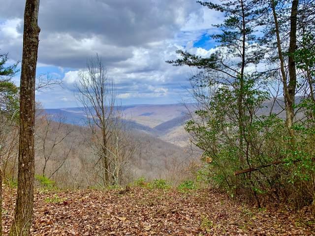 0 Haynes Rd, Sewanee, TN 37375 (MLS #RTC2236074) :: Nashville on the Move