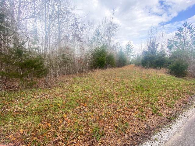 0 Indian Mound Rd, Sparta, TN 38583 (MLS #RTC2237320) :: Nashville on the Move