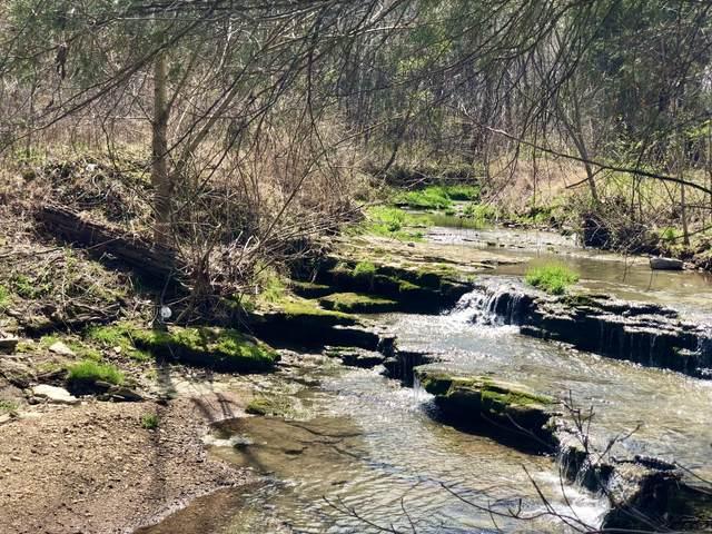 1154 Dutch Creek Rd, Westmoreland, TN 37186 (MLS #RTC2237877) :: Team Jackson | Bradford Real Estate