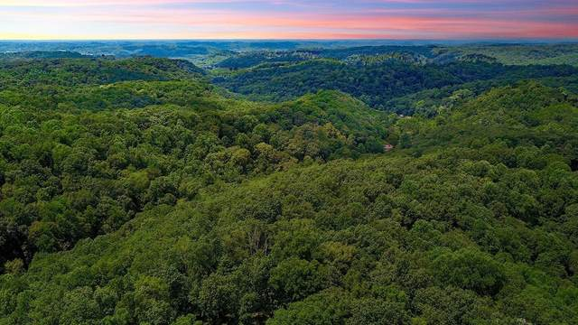 6078 Fire Tower Rd, Nashville, TN 37221 (MLS #RTC2238067) :: Maples Realty and Auction Co.