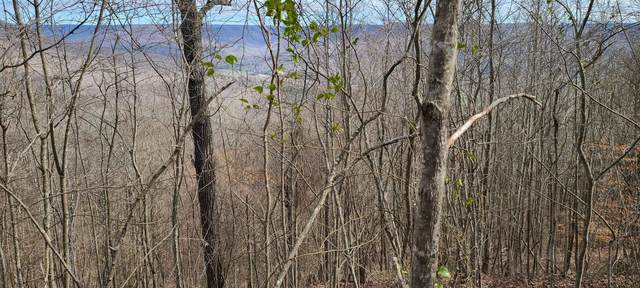 0 Saddletree Lane, Sewanee, TN 37375 (MLS #RTC2238325) :: Morrell Property Collective | Compass RE