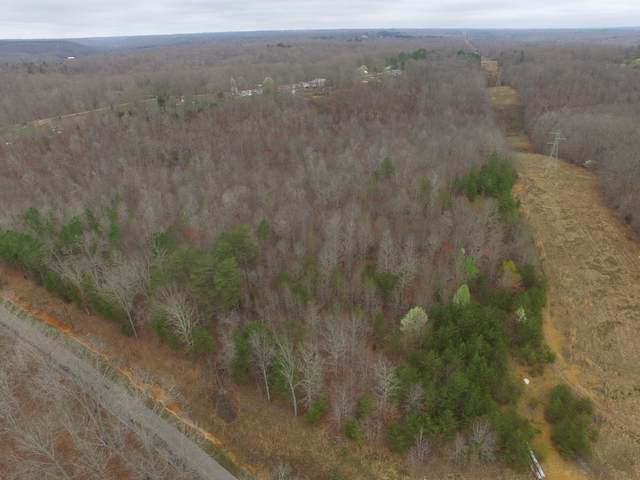 0 Dial Hollow Rd, Hohenwald, TN 38462 (MLS #RTC2238670) :: DeSelms Real Estate