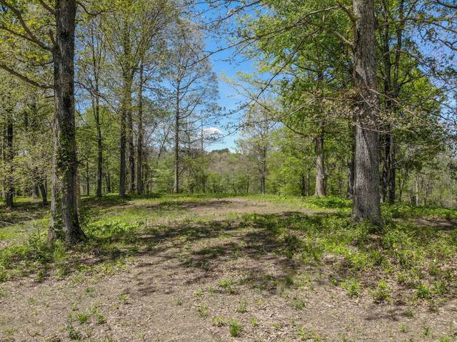 0 Beasley Drive, Dickson, TN 37055 (MLS #RTC2238891) :: Nashville on the Move