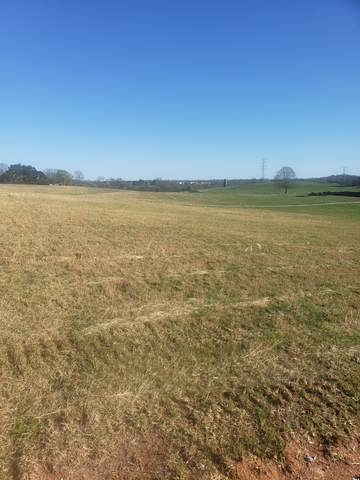 2A Butler Rd, Columbia, TN 38401 (MLS #RTC2240038) :: The Milam Group at Fridrich & Clark Realty