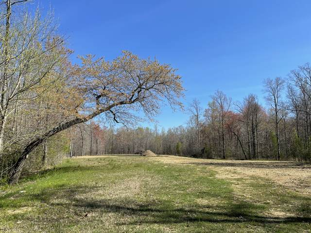 248 Flintville School Rd, Elora, TN 37328 (MLS #RTC2240119) :: Village Real Estate