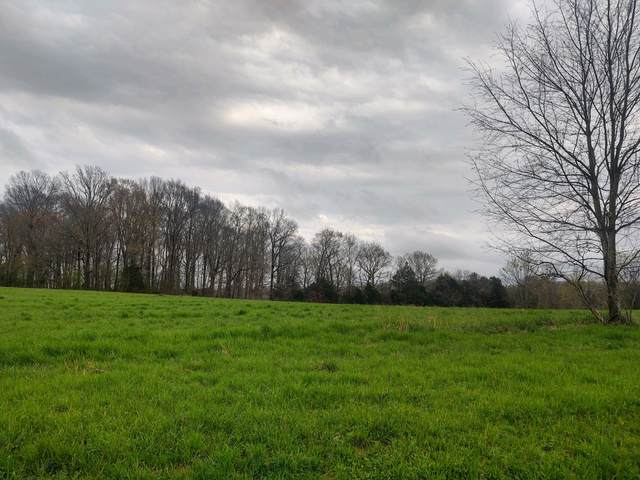 1 Scottsville Rd, Lafayette, TN 37083 (MLS #RTC2241105) :: Village Real Estate