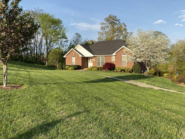 3851 Springdale Ln, Cunningham, TN 37052 (MLS #RTC2241518) :: Real Estate Works