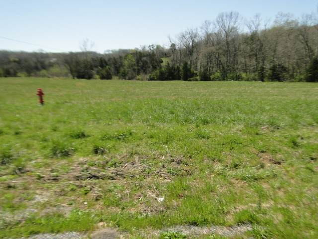 0 41A South, Wartrace, TN 37183 (MLS #RTC2241562) :: Nashville on the Move