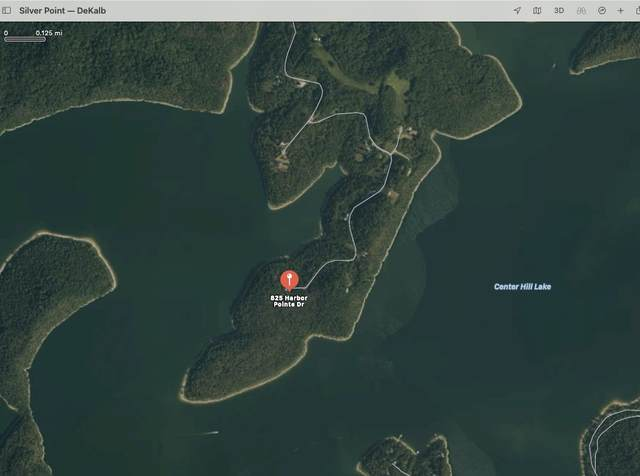825 Harbor Pointe Drive, Silver Point, TN 38582 (MLS #RTC2242267) :: Village Real Estate