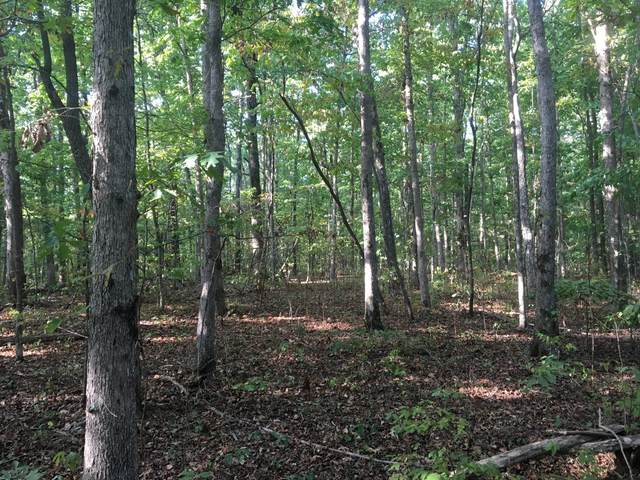 0 Deer Run Rd, Altamont, TN 37301 (MLS #RTC2242498) :: Village Real Estate