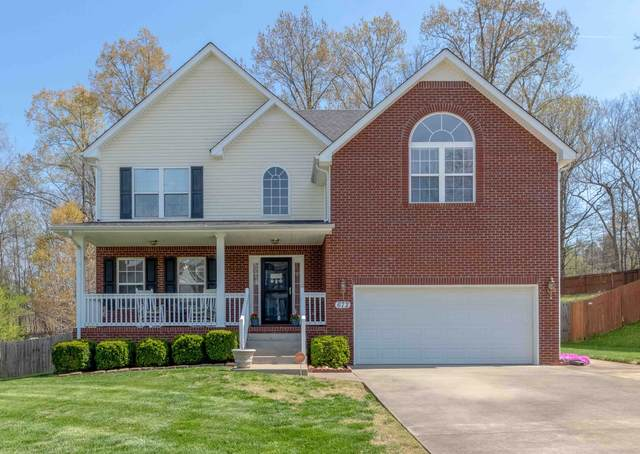 672 Winding Bluff Way, Clarksville, TN 37040 (MLS #RTC2242795) :: Platinum Realty Partners, LLC