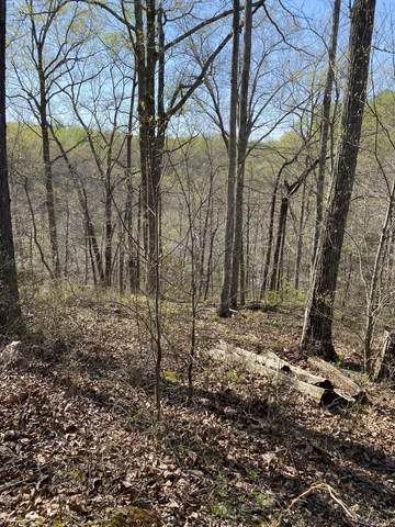 0 Paint Pony Trail, Pegram, TN 37143 (MLS #RTC2243289) :: Amanda Howard Sotheby's International Realty