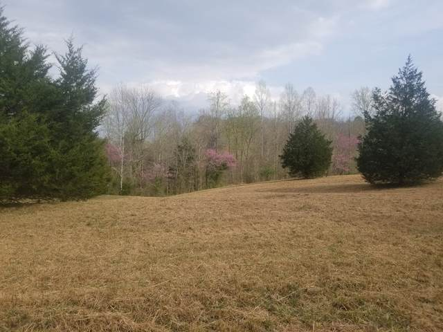 8961 Medlin Rd 17.72 Ac S, Baxter, TN 38544 (MLS #RTC2243695) :: DeSelms Real Estate