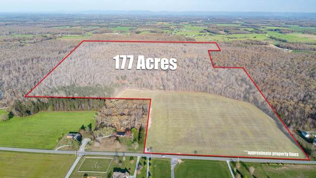 0 Woodbury Hwy, Manchester, TN 37355 (MLS #RTC2243873) :: Live Nashville Realty