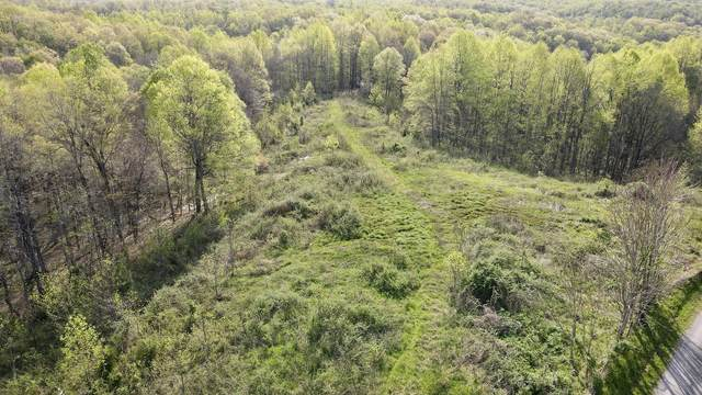 0 Womack Hollow, Liberty, TN 37095 (MLS #RTC2244313) :: Maples Realty and Auction Co.
