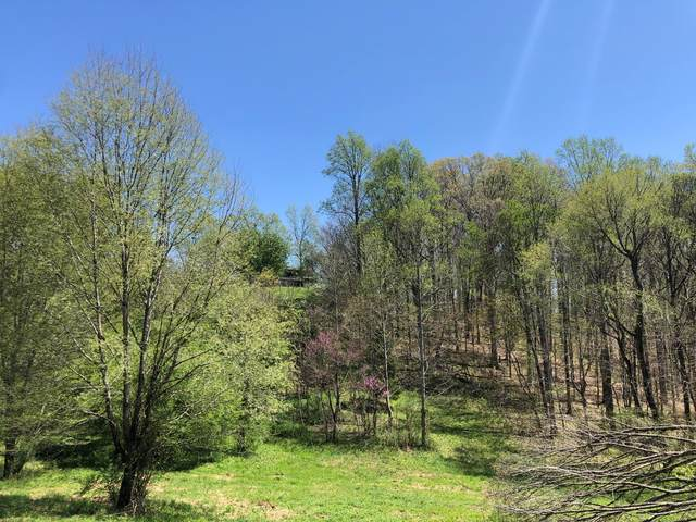 0 Dodson Duke Rd, Manchester, TN 37355 (MLS #RTC2244538) :: Team Jackson | Bradford Real Estate