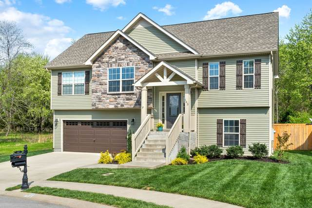 163 Sycamore Hill Dr, Clarksville, TN 37042 (MLS #RTC2244553) :: Kenny Stephens Team