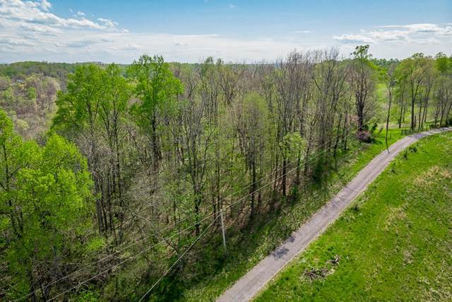 0 Aunt Helen Rd, Silver Point, TN 38582 (MLS #RTC2244741) :: Village Real Estate