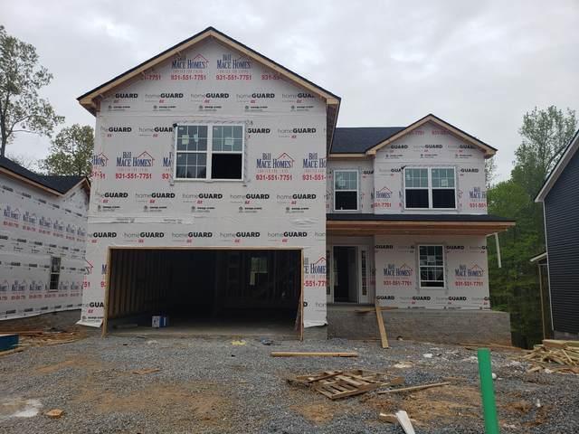 36 Woodland Hills, Clarksville, TN 37040 (MLS #RTC2244748) :: Nelle Anderson & Associates