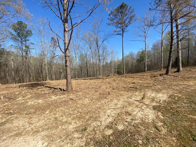 116 Deer Trl, Cumberland City, TN 37050 (MLS #RTC2244887) :: Village Real Estate