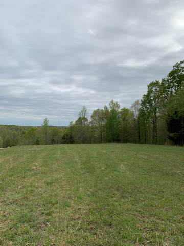 3200 Jack Saunders Rd, Waverly, TN 37185 (MLS #RTC2245205) :: Village Real Estate