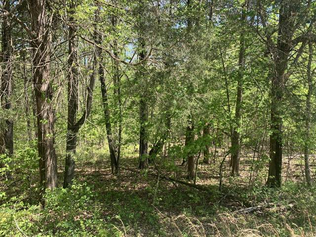 0 Mcgee Rd, Lyles, TN 37098 (MLS #RTC2246372) :: Village Real Estate