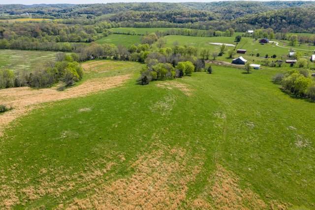 4186 Catheys Creek Rd, Hampshire, TN 38461 (MLS #RTC2246506) :: Fridrich & Clark Realty, LLC