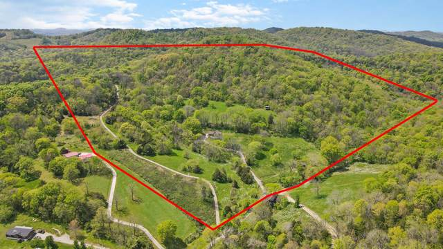 137 Gills Branch Ln, Gordonsville, TN 38563 (MLS #RTC2246959) :: Maples Realty and Auction Co.