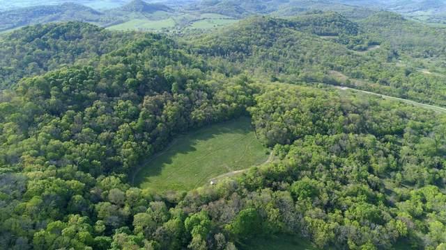 0 Gammons Ln, Hartsville, TN 37074 (MLS #RTC2247022) :: Clarksville.com Realty