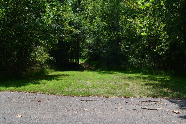96 Ramery Rd, Cumberland City, TN 37050 (MLS #RTC2247233) :: Maples Realty and Auction Co.