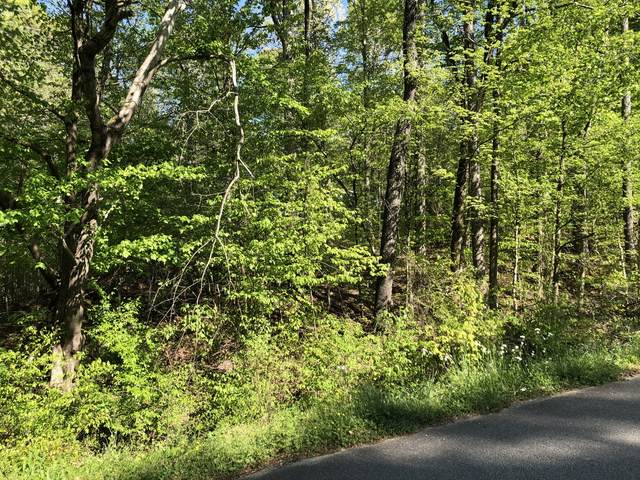 2049 Britt Rd, Lobelville, TN 37097 (MLS #RTC2247249) :: Maples Realty and Auction Co.