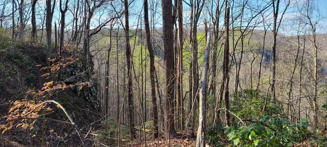 0 Hummingbird Ln Lo 1, Monteagle, TN 37356 (MLS #RTC2247579) :: The Adams Group