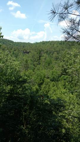 6299 Delina Rd, Petersburg, TN 37144 (MLS #RTC2247588) :: Village Real Estate
