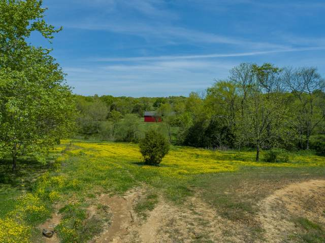 2810 Owl Hollow Rd, Franklin, TN 37064 (MLS #RTC2248234) :: Nashville on the Move
