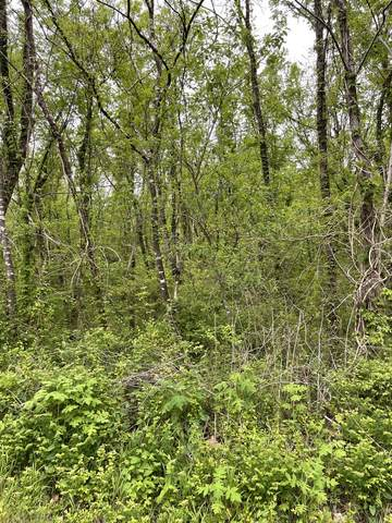 0 Happy Valley Road, Bell Buckle, TN 37020 (MLS #RTC2249278) :: Nashville on the Move
