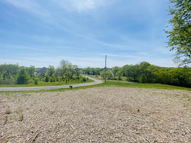 1040 Emerald Valley Dr, Castalian Springs, TN 37031 (MLS #RTC2250147) :: Randi Wilson with Clarksville.com Realty