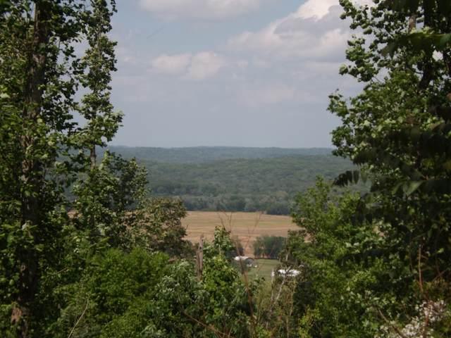 0 Dogwood Dr (Redbud Ln), Pulaski, TN 38478 (MLS #RTC2250484) :: Kimberly Harris Homes