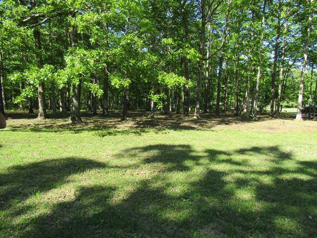 1 Cheyenne Cir, Beechgrove, TN 37018 (MLS #RTC2251492) :: Village Real Estate
