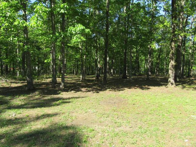 2 Cheyenne Cir, Beechgrove, TN 37018 (MLS #RTC2251494) :: DeSelms Real Estate