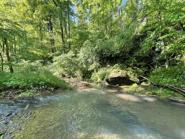 0 Cave Branch Road, Dickson, TN 37055 (MLS #RTC2251603) :: The Kelton Group